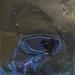 http://www.alesruzicka.com/obraz/imagecache/hires/img-1286.jpg