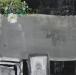 http://www.alesruzicka.com/obraz/imagecache/hires/z_cyklu_stale_ziveiv_40x40_cm_akryl_na_platne_2010.jpg